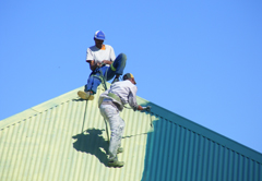 Roof Painting 1
