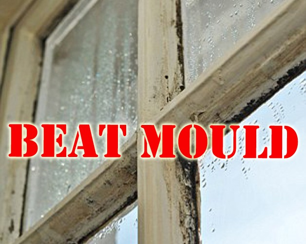 Top Tip Mould Cleaning